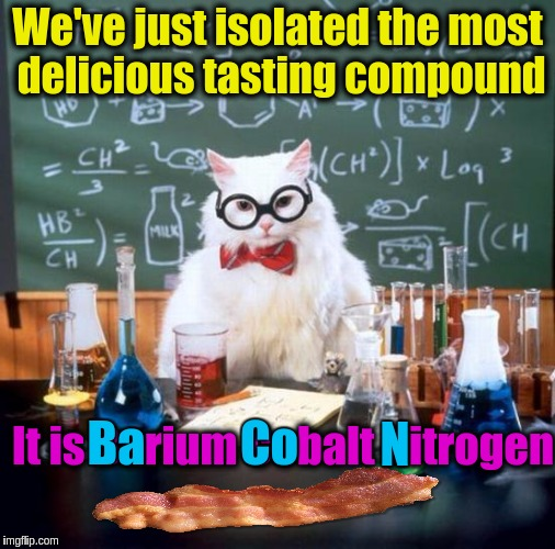Tasty Chemistry!!!  ✌✌✌ | We've just isolated the most delicious tasting compound It is Barium Cobalt Nitrogen Ba Co N | image tagged in memes,chemistry cat,funny,bacon,food,delicious | made w/ Imgflip meme maker