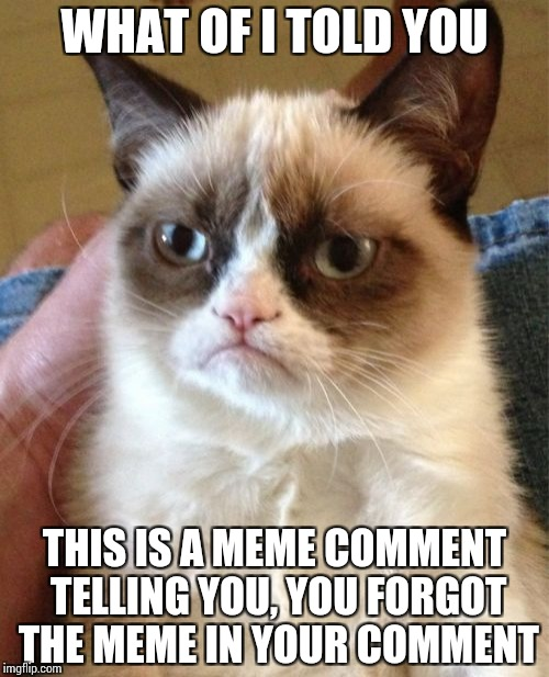 Grumpy Cat Meme | WHAT OF I TOLD YOU THIS IS A MEME COMMENT TELLING YOU, YOU FORGOT THE MEME IN YOUR COMMENT | image tagged in memes,grumpy cat | made w/ Imgflip meme maker