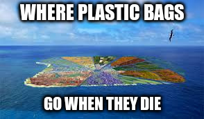 WHERE PLASTIC BAGS GO WHEN THEY DIE | made w/ Imgflip meme maker