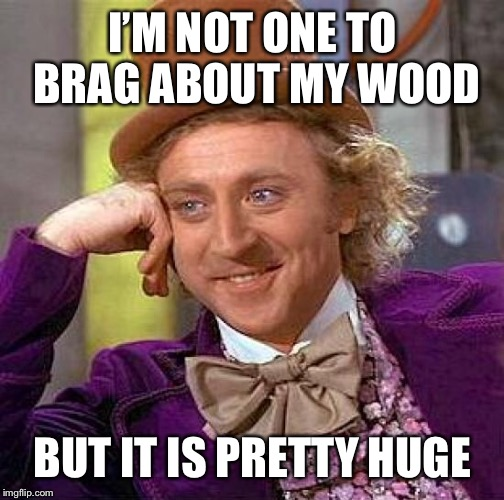 Creepy Condescending Wonka Meme | I'M NOT ONE TO BRAG ABOUT MY WOOD BUT IT IS PRETTY HUGE | image tagged in memes,creepy condescending wonka | made w/ Imgflip meme maker