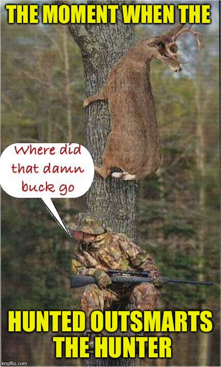 Who's the dummy now | THE MOMENT WHEN THE HUNTED OUTSMARTS THE HUNTER | image tagged in hunting season,hunting,deer,hunter,tree climbing | made w/ Imgflip meme maker