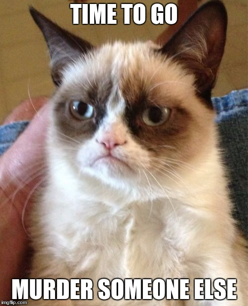 Grumpy Cat Meme | TIME TO GO MURDER SOMEONE ELSE | image tagged in memes,grumpy cat | made w/ Imgflip meme maker