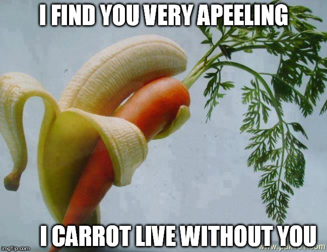 I FIND YOU VERY APEELING I CARROT LIVE WITHOUT YOU | made w/ Imgflip meme maker