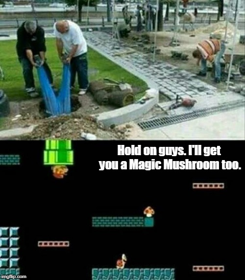 No wonder it takes so long for them to finish their projects. | Hold on guys. I'll get you a Magic Mushroom too. | image tagged in funny picture,mario party,mushrooms,at work | made w/ Imgflip meme maker