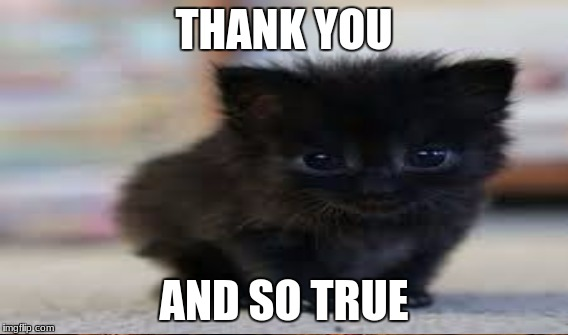 THANK YOU AND SO TRUE | made w/ Imgflip meme maker