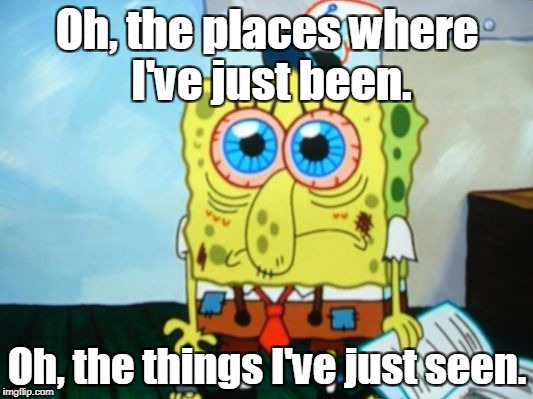 Oh, the places where I've just been. Oh, the things I've just seen. | made w/ Imgflip meme maker