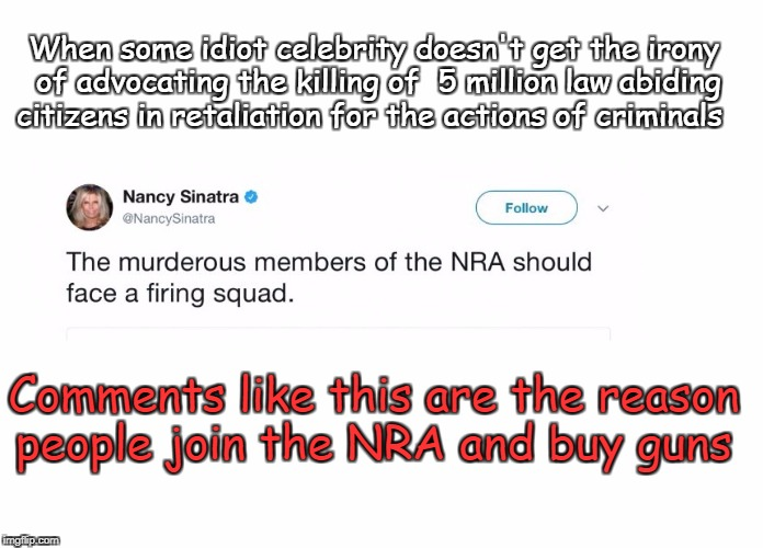 Idiot Celebrities | When some idiot celebrity doesn't get the irony of advocating the killing of  5 million law abiding citizens in retaliation for the actions  | image tagged in nancy and gun control,kill 'em all,nra,antifa | made w/ Imgflip meme maker