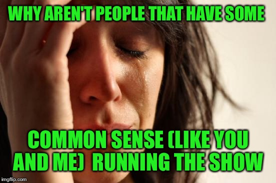 First World Problems Meme | WHY AREN'T PEOPLE THAT HAVE SOME COMMON SENSE (LIKE YOU AND ME)  RUNNING THE SHOW | image tagged in memes,first world problems | made w/ Imgflip meme maker