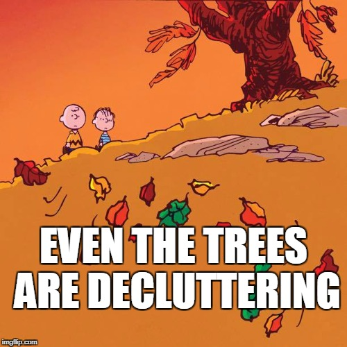 Fall Cleaning | EVEN THE TREES ARE DECLUTTERING | image tagged in charlie brown and linus,autumn,leaves,decluttering,fall | made w/ Imgflip meme maker