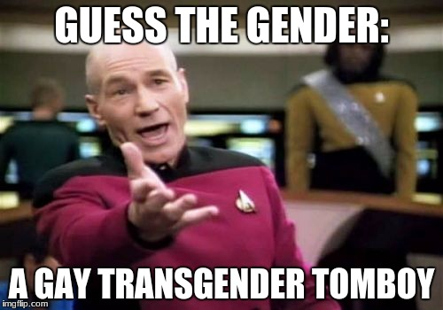 Picard Wtf Meme | GUESS THE GENDER: A GAY TRANSGENDER TOMBOY | image tagged in memes,picard wtf | made w/ Imgflip meme maker