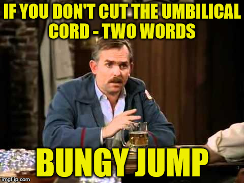 bungy jump |  IF YOU DON'T CUT THE UMBILICAL CORD - TWO WORDS; BUNGY JUMP | image tagged in cheers,bungee jumping,bungee | made w/ Imgflip meme maker
