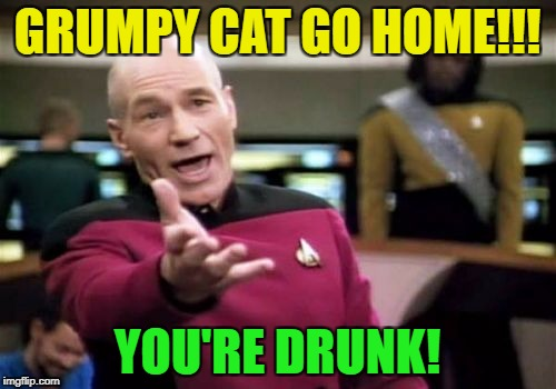 Picard Wtf Meme | GRUMPY CAT GO HOME!!! YOU'RE DRUNK! | image tagged in memes,picard wtf | made w/ Imgflip meme maker