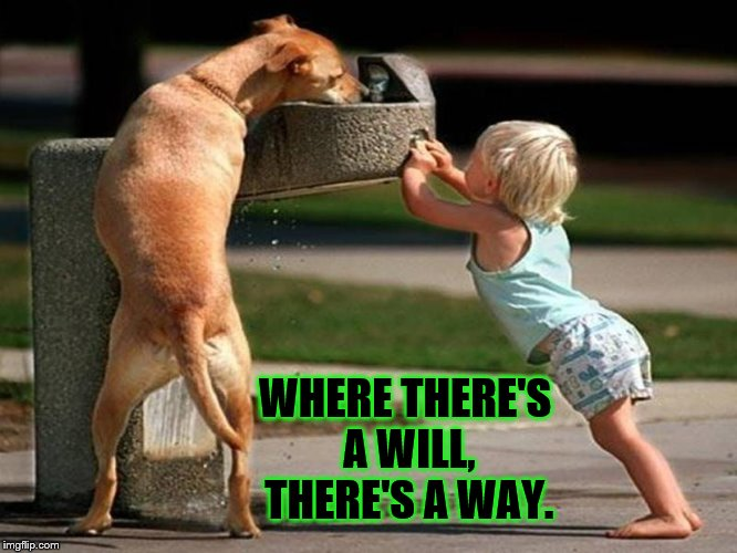 Where There's a Will, There's a Way - Baby Helps Dog Drink From Fountain | WHERE THERE'S A WILL, THERE'S A WAY. | image tagged in baby helps dog drink,memes,dog drinking from fountain,help a friend | made w/ Imgflip meme maker
