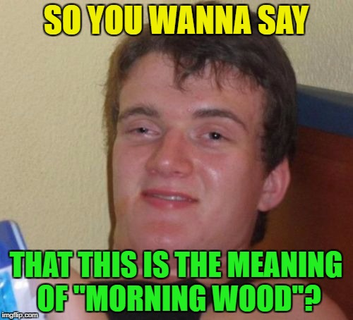 "10 Guy Meme | SO YOU WANNA SAY THAT THIS IS THE MEANING OF ""MORNING WOOD""? 