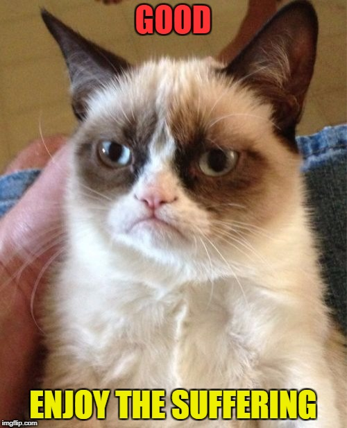 Grumpy Cat Meme | GOOD ENJOY THE SUFFERING | image tagged in memes,grumpy cat | made w/ Imgflip meme maker