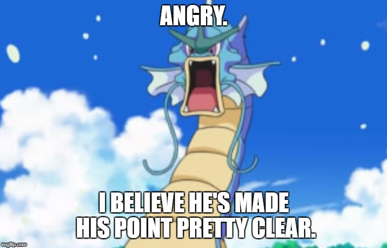 Gyrage. | ANGRY. I BELIEVE HE'S MADE HIS POINT PRETTY CLEAR. | image tagged in gyarados roar | made w/ Imgflip meme maker