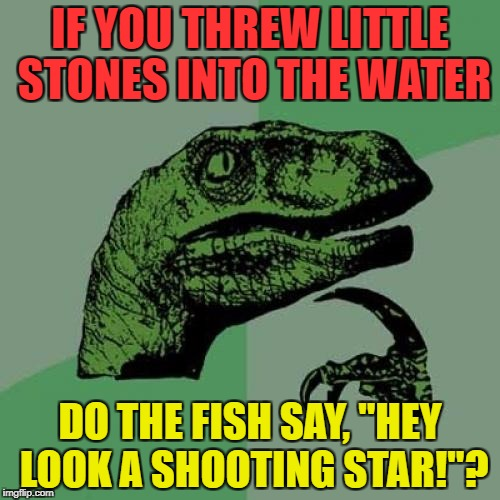 "Philosoraptor Meme | IF YOU THREW LITTLE STONES INTO THE WATER DO THE FISH SAY, ""HEY LOOK A SHOOTING STAR!""? 