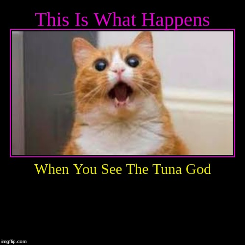 This Is What Happens | When You See The Tuna God | image tagged in funny,demotivationals | made w/ Imgflip demotivational maker