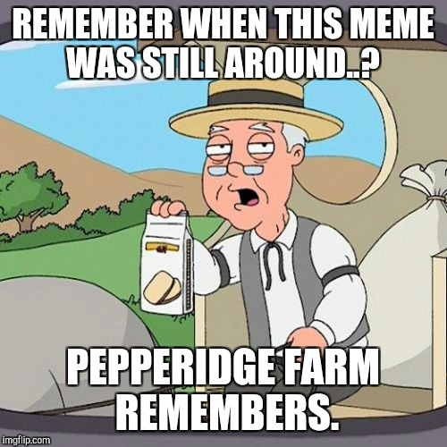 Pepperidge Farm Remembers Meme | REMEMBER WHEN THIS MEME WAS STILL AROUND..? PEPPERIDGE FARM REMEMBERS. | image tagged in memes,pepperidge farm remembers | made w/ Imgflip meme maker