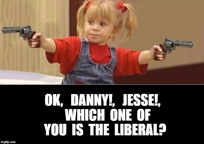 Liberal full house. | OK,   DANNY!,   JESSE!,    WHICH  ONE  OF  YOU  IS  THE  LIBERAL? | image tagged in offensive,memes | made w/ Imgflip meme maker