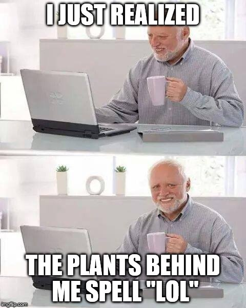 "Hide the Pain Harold Meme | I JUST REALIZED THE PLANTS BEHIND ME SPELL ""LOL"" 