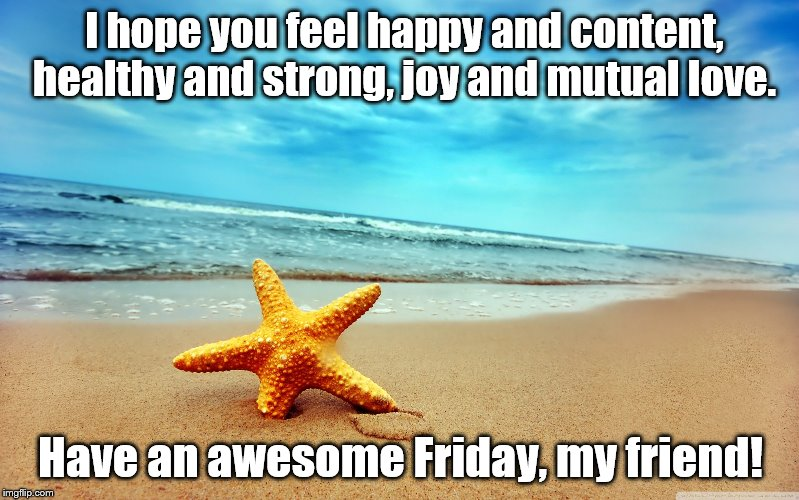 I hope you feel happy and content, healthy and strong, joy and mutual love. Have an awesome Friday, my friend! | image tagged in my wish | made w/ Imgflip meme maker