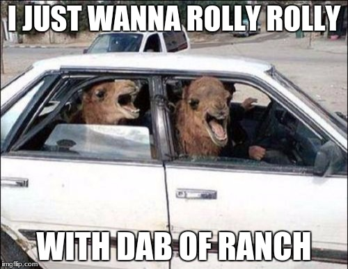 Quit Hatin |  I JUST WANNA ROLLY ROLLY; WITH DAB OF RANCH | image tagged in memes,quit hatin | made w/ Imgflip meme maker