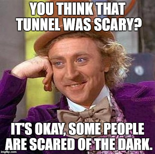 Creepy Condescending Wonka Meme | YOU THINK THAT TUNNEL WAS SCARY? IT'S OKAY, SOME PEOPLE ARE SCARED OF THE DARK. | image tagged in memes,creepy condescending wonka | made w/ Imgflip meme maker