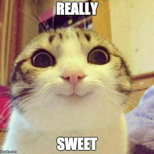 Sweet! | REALLY SWEET | image tagged in memes,smiling cat | made w/ Imgflip meme maker