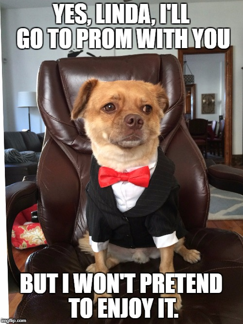 Ralphie Prom | YES, LINDA, I'LL GO TO PROM WITH YOU BUT I WON'T PRETEND TO ENJOY IT. | image tagged in dog,prom,listen linda,sad dog | made w/ Imgflip meme maker