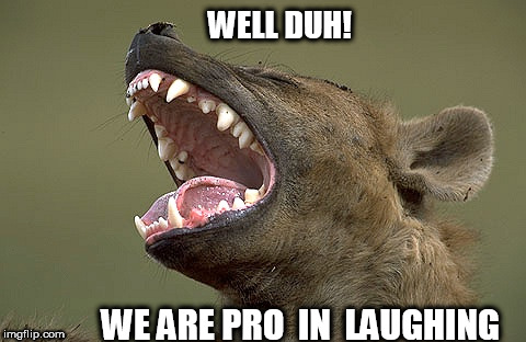 WELL DUH! WE ARE PRO  IN  LAUGHING | made w/ Imgflip meme maker
