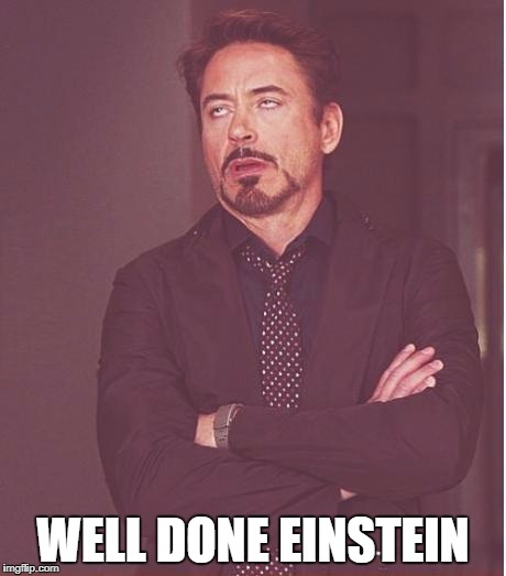 Face You Make Robert Downey Jr Meme | WELL DONE EINSTEIN | image tagged in memes,face you make robert downey jr | made w/ Imgflip meme maker