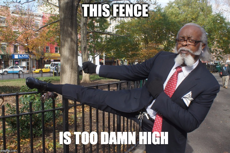 THIS FENCE IS TOO DAMN HIGH | image tagged in memes,too damn high,fence | made w/ Imgflip meme maker