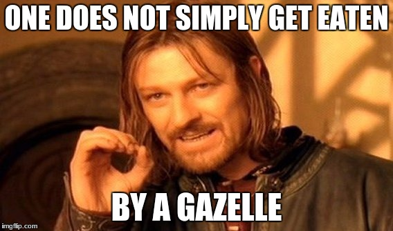 One Does Not Simply Meme | ONE DOES NOT SIMPLY GET EATEN BY A GAZELLE | image tagged in memes,one does not simply | made w/ Imgflip meme maker