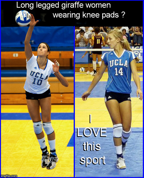 Women's Volleyball- Oh yeah | image tagged in babes,hot babes,funny memes,funny,lol so funny | made w/ Imgflip meme maker
