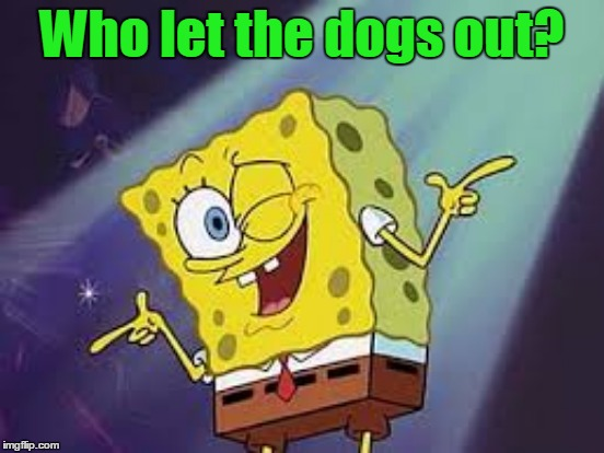 Who let the dogs out? | made w/ Imgflip meme maker