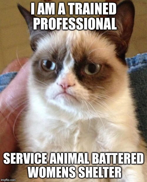 Grumpy Cat Meme | I AM A TRAINED PROFESSIONAL SERVICE ANIMAL BATTERED WOMENS SHELTER | image tagged in memes,grumpy cat | made w/ Imgflip meme maker