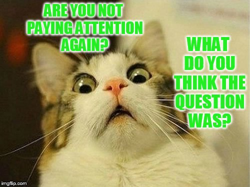 ARE YOU NOT PAYING ATTENTION AGAIN? WHAT DO YOU THINK THE QUESTION WAS? | made w/ Imgflip meme maker