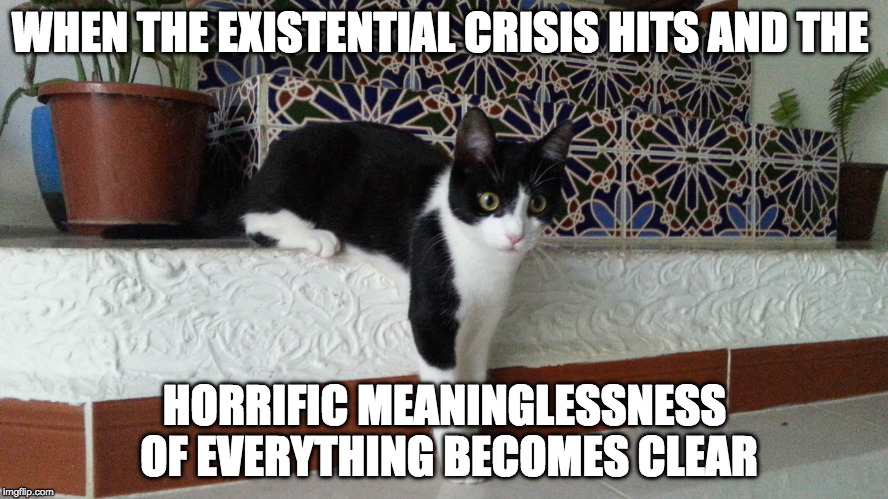 WHEN THE EXISTENTIAL CRISIS HITS AND THE HORRIFIC MEANINGLESSNESS OF EVERYTHING BECOMES CLEAR | image tagged in late realization cate | made w/ Imgflip meme maker