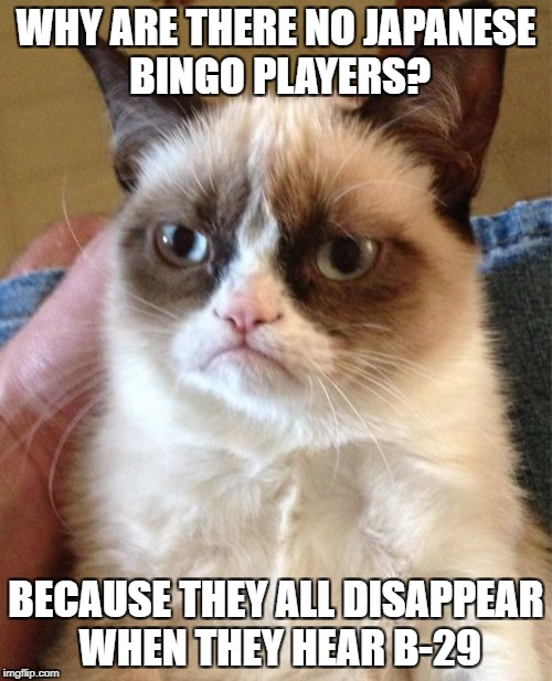 Bit offensive  | WHY ARE THERE NO JAPANESE BINGO PLAYERS? BECAUSE THEY ALL DISAPPEAR WHEN THEY HEAR B-29 | image tagged in memes,grumpy cat | made w/ Imgflip meme maker