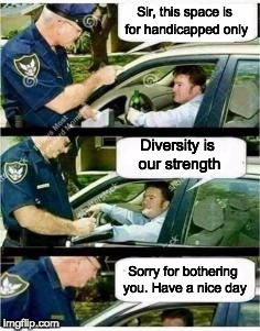 Police Reserved Parking | Sir, this space is for handicapped only Diversity is our strength Sorry for bothering you. Have a nice day | image tagged in police reserved parking | made w/ Imgflip meme maker