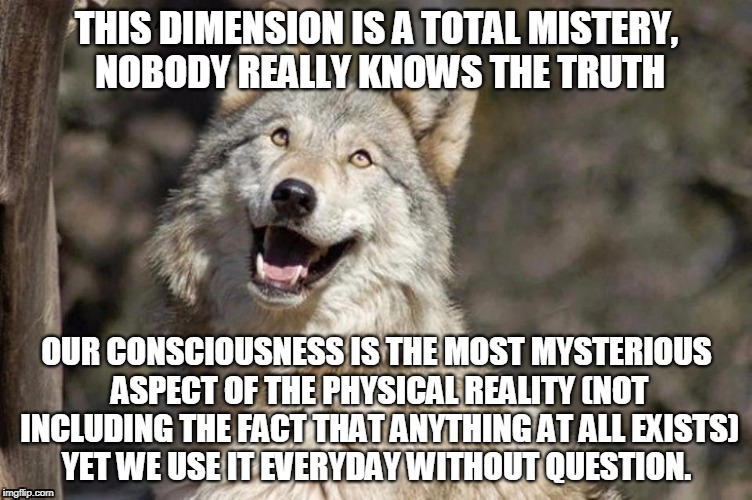 Optimistic Moon Moon Wolf Vanadium Wolf | THIS DIMENSION IS A TOTAL MISTERY, NOBODY REALLY KNOWS THE TRUTH OUR CONSCIOUSNESS IS THE MOST MYSTERIOUS ASPECT OF THE PHYSICAL REALITY (NO | image tagged in optimistic moon moon wolf vanadium wolf | made w/ Imgflip meme maker