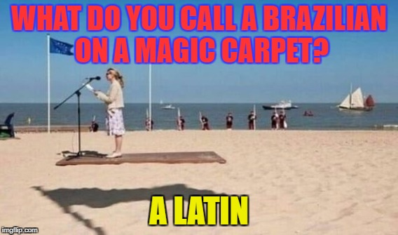 What kind of pet does every genie have? - A magic car-pet | WHAT DO YOU CALL A BRAZILIAN ON A MAGIC CARPET? A LATIN | image tagged in funny,memes,optical illusion,aladdin,magic | made w/ Imgflip meme maker