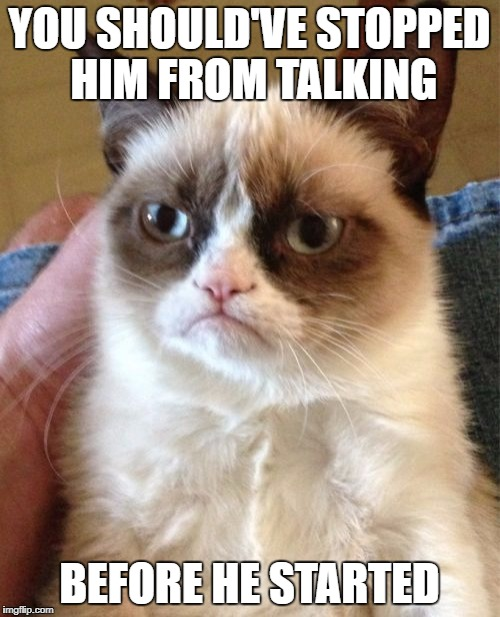 Grumpy Cat Meme | YOU SHOULD'VE STOPPED HIM FROM TALKING BEFORE HE STARTED | image tagged in memes,grumpy cat | made w/ Imgflip meme maker