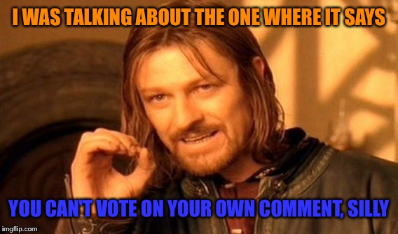 One Does Not Simply Meme | I WAS TALKING ABOUT THE ONE WHERE IT SAYS YOU CAN'T VOTE ON YOUR OWN COMMENT, SILLY | image tagged in memes,one does not simply | made w/ Imgflip meme maker