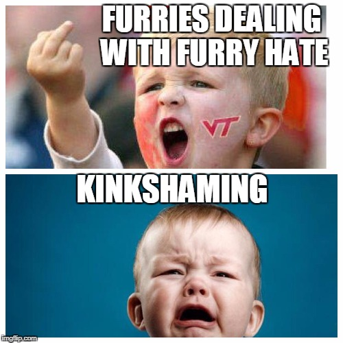FURRIES DEALING WITH FURRY HATE KINKSHAMING | image tagged in furries | made w/ Imgflip meme maker