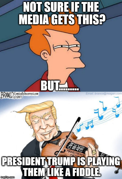 The Fake News Media is soooo Stupid!  | NOT SURE IF THE MEDIA GETS THIS? PRESIDENT TRUMP IS PLAYING THEM LIKE A FIDDLE. BUT......... | image tagged in maga,president trump,clifton shepherd cliffshep | made w/ Imgflip meme maker
