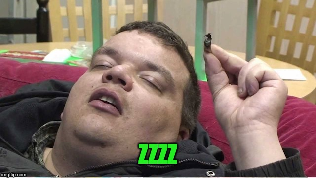 Sleeping stoner | ZZZZ | image tagged in sleeping stoner | made w/ Imgflip meme maker