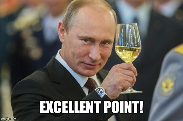 Putin Cheers | EXCELLENT POINT! | image tagged in putin cheers | made w/ Imgflip meme maker