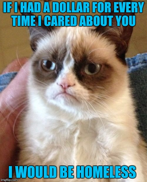 Grumpy Cat Meme | IF I HAD A DOLLAR FOR EVERY TIME I CARED ABOUT YOU I WOULD BE HOMELESS | image tagged in memes,grumpy cat | made w/ Imgflip meme maker